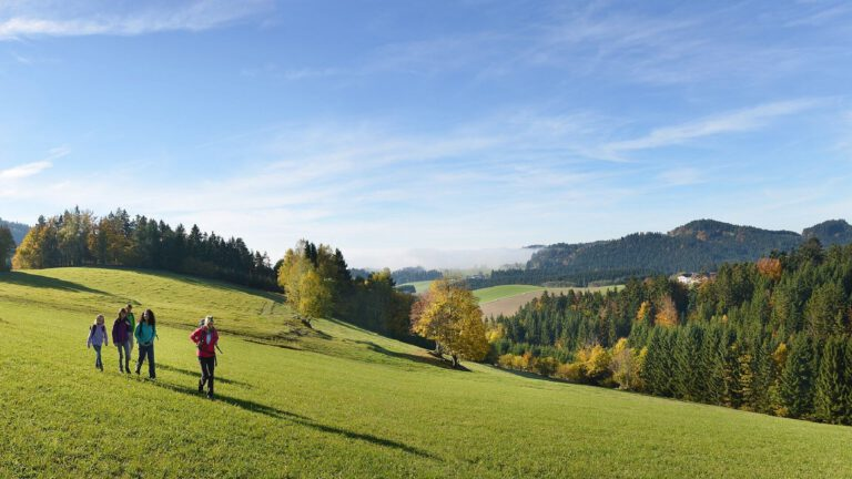 Der Böhmerwald