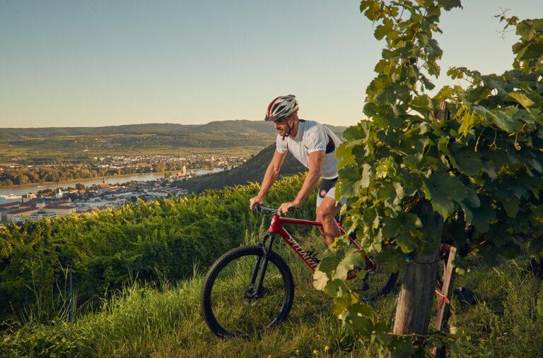 Radfahren in der Donauregion